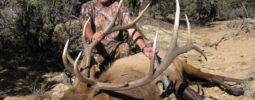 Hunted N.W. New Mexico 2014 during muzzleloader season. Had one opportunity and that is all it took with Wolverine 209. 43yds and only went additional 30yds.