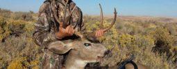 """My son Brennon Hart age 12 with a 4x5 muley in eastern WA 2014 Knight Little Horn, thanks Knight!!!"" Randy Hart Dean Jr, Washington"