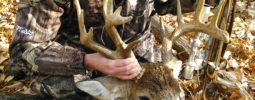 Biggest buck I have taken. first day of shotgun 2014 in central Indiana. Caught him chasing four does stopped him long enough for my knight 50 cal master hunter to do the work. Once in life time buck!