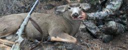 2017 California mule deer taken on public land at 180 yards with my Kinght LK-93