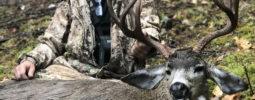 2017 Oregon blacktail
